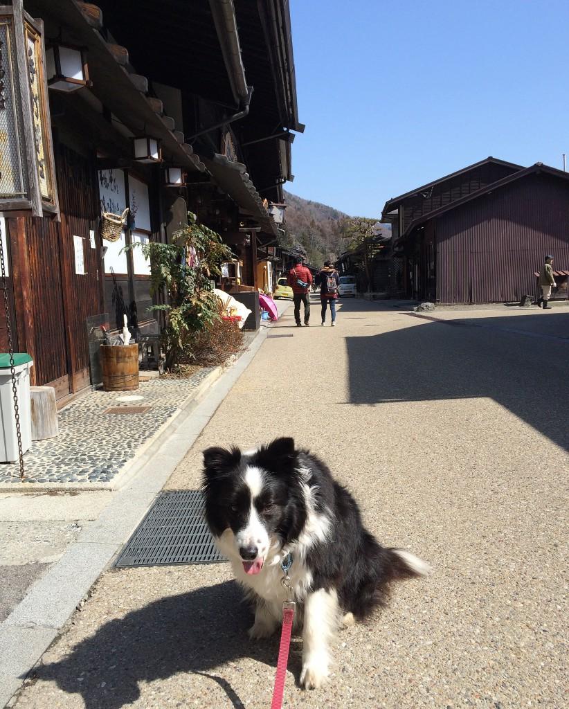 奈良井宿で夏風とお散歩